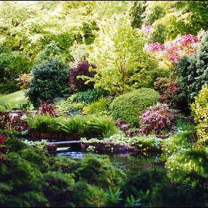 Šumski Vrt – Planiranje