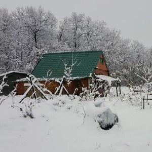 Šumske Vesti – Januar 2021.